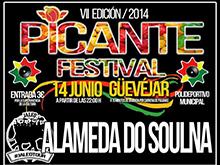 Picante rock festival 2014